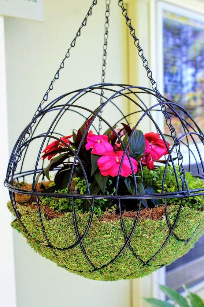DIY Hanging Garden Sphere. Hanging garden spheres are a unique alternative to ha...