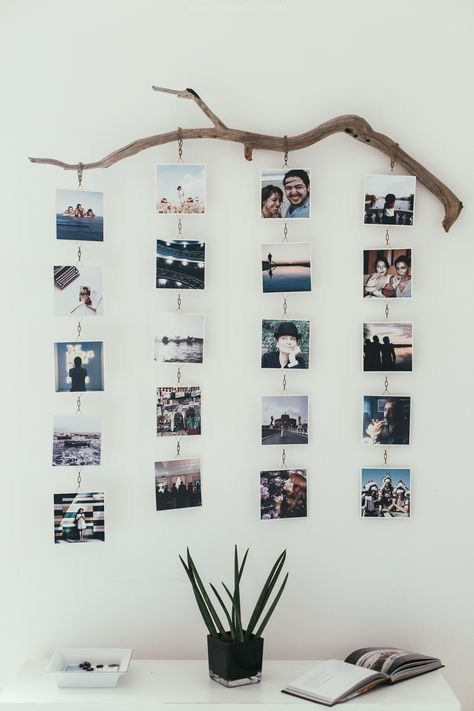 Nice way to hang your photos. On a tree branch in rows under each ...