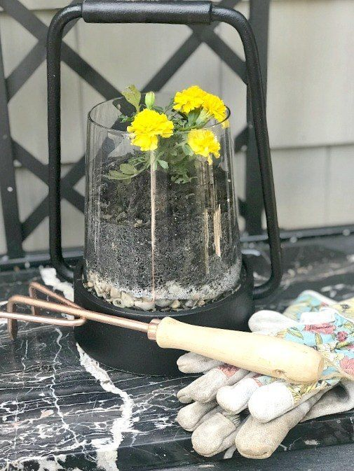 Lantern upcycle. How to repurpose a lantern into a planter with this seasonal su...