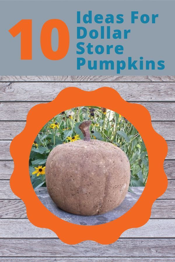 It's time to hit the Dollar Store and grab some plastic pumpkins because these...