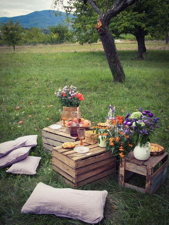 picnic ideas in the forest with diy platforms