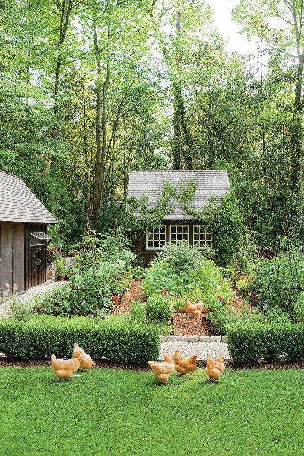 Dream garden! It even has a chicken coop Southern Living | An Atlanta couple