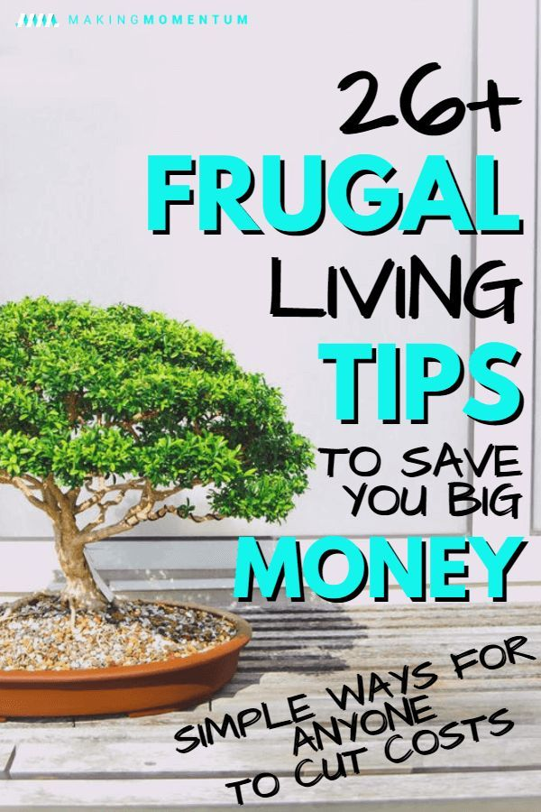 Are you looking for easy ways to save big money in 2019? Here are some great fru...