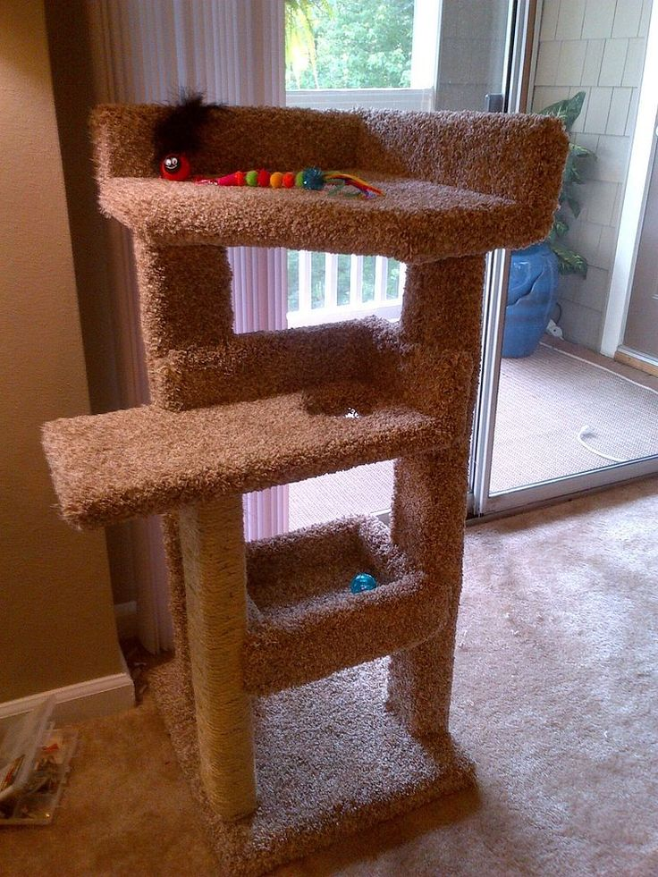 DIY+-++Kitty+Scratching+Post+and+Bed