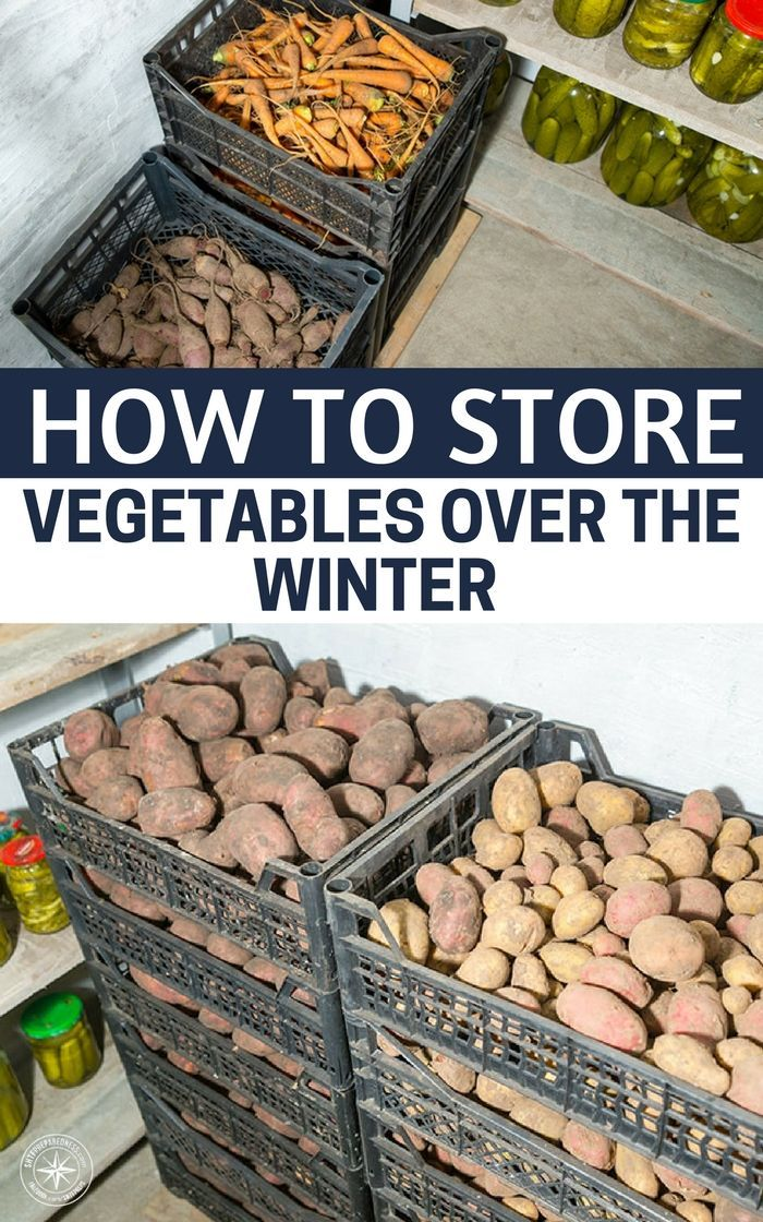 How to Store Vegetables Over the Winter: Modern and Vintage Storage Tips - If yo...
