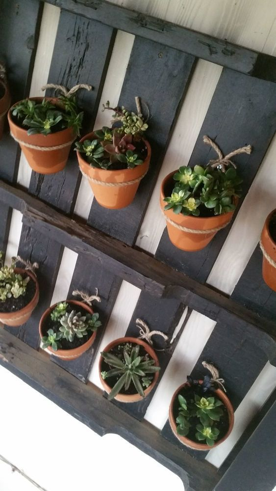 How to Turn a Pallet Into a Plant Hanger DIY