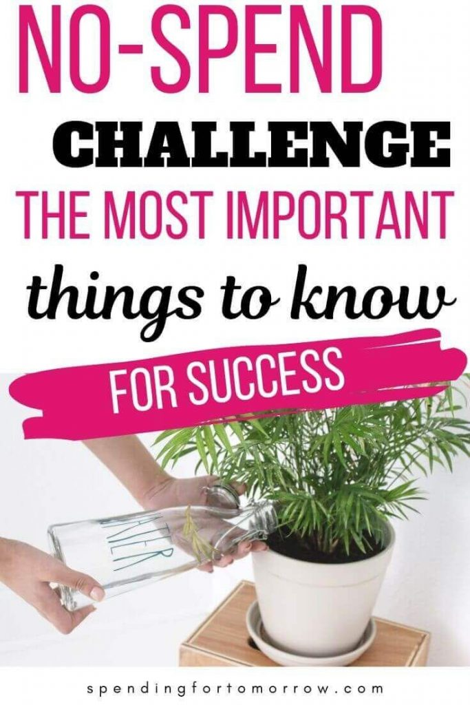 Start a No Spend Challenge. Learn these tips for success. Payoff debt and build ...