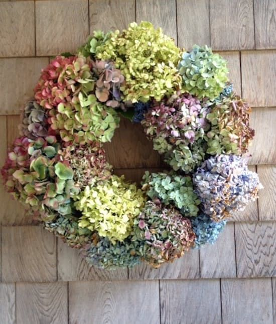 This gorgeous yet simple wreath highlights one of the season's most beautifu...