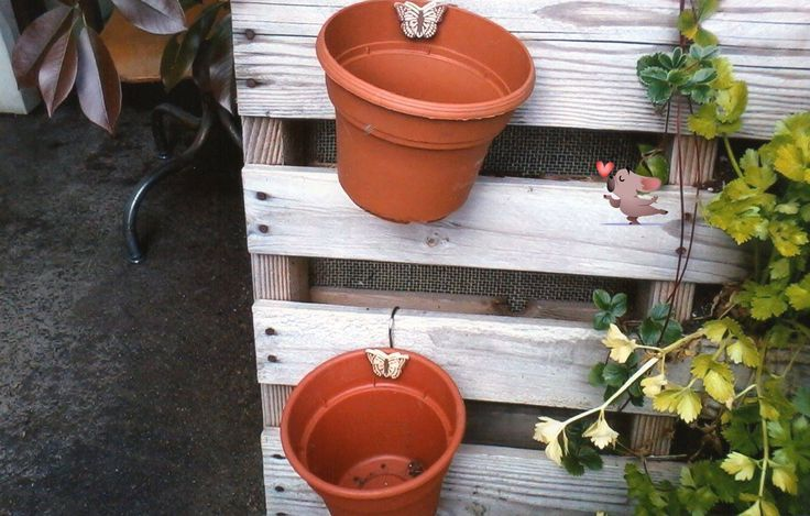 I am using shower curtain hangers to hang my pots on my upright pallet garden